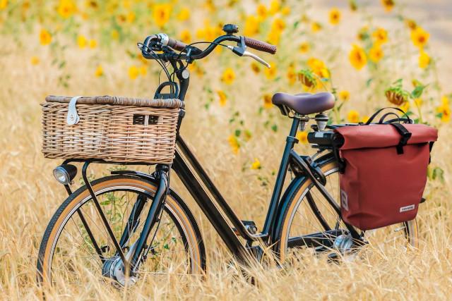 travelite Fahrradtasche
