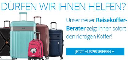 <h1>Reisegepäck</h1>